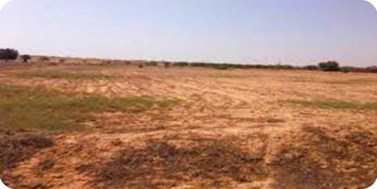 Terrain de 92 430  m² sis à Ouagdougou. Usage Idéal: Complexe scolaire