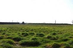 Terrain de 4 352  m² à la Zone du bois