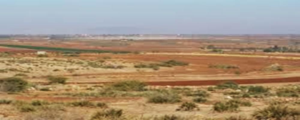 Terrain de 70 000 m², Extension de Ouaga 2000 à usage d'habitation