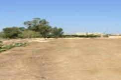Terrain de 1 200 m²