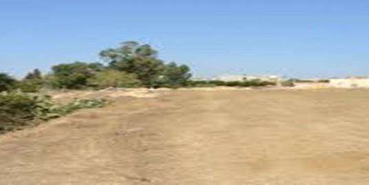 Ouaga 2000, zone A1. Terrain de 1 200 m². Usage d'Habitation