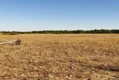 Terrain propice pour un aménagement agropastorale